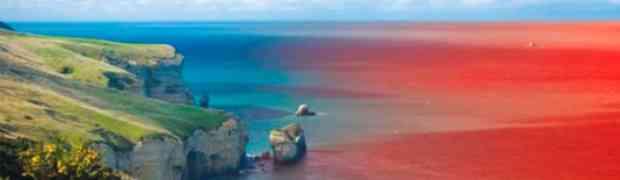 Océanos azules para tu marca personal